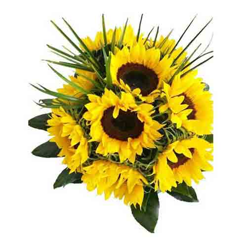 Fresh Sunflowers Hand Bunch