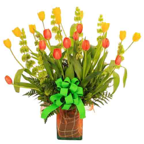 Sunny Morning Flower Bouquet of Tulips