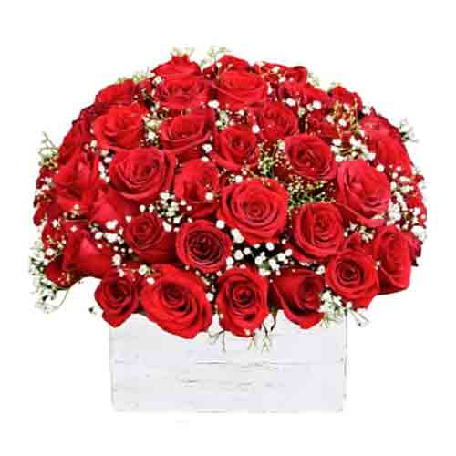 Radiant Pure passion Bouquet of Red Color Roses