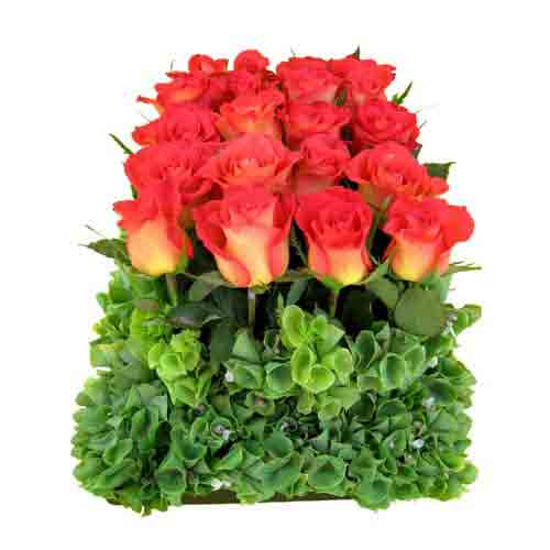 Brilliant Holiday Celebration Bouquet of Roses