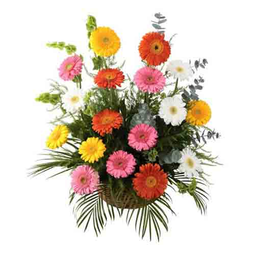 Clustered Summer Delight Gerbera Bouquet