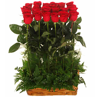 Designed Arrangement of Love 12 Red Roses
