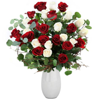 Mind Blowing 36 Arrangement of Red and White Roses