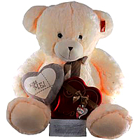 Giant Teddy Bear with Chocolates