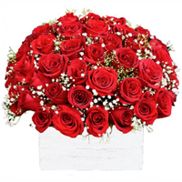 Enigmatic 50 Red Roses Arrangement for Valentines Day<br>