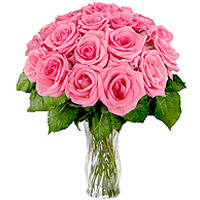 36 Pink Roses Bouquet
